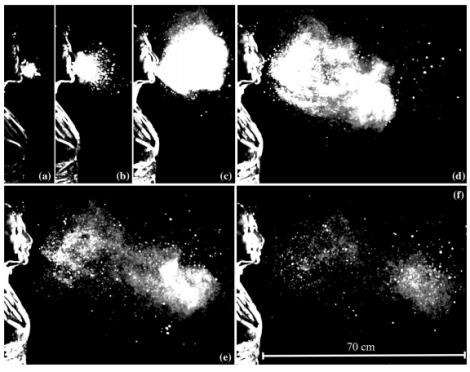 sneezedynamics